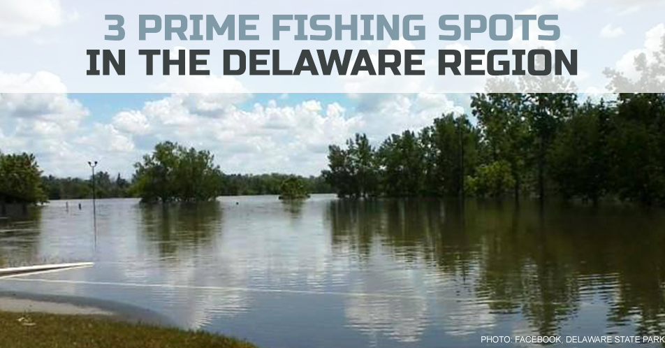 3 Prime Fishing Spots in the Delaware Region