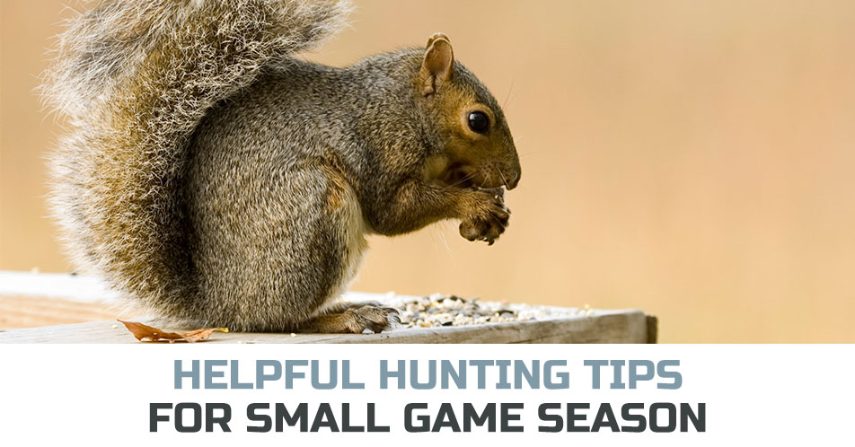 Helpful Hunting Tips for Small Game Season